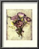 Lisianthus Posters by Rosanne Olson