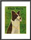 Border Collie Art by John Golden