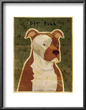 Pit Bull Print by John Golden