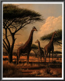 Giraffe Family Art by Clive Kay