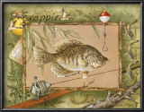 Crappie Art by Anita Phillips