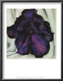 Purple Petunia Posters by Georgia O&#39;Keeffe