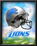 2009 Detroit Lions Team Logo Art