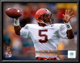 Donovan McNabb Poster