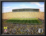 Michigan Stadium University of Michigan Wolverines 2009 Prints