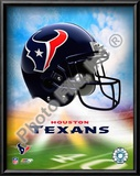 2009 Houston Texans  Logo Art