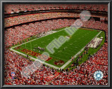 Fed Ex Field Prints