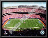 Giants Stadium Prints