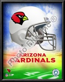 2009 Arizona Cardinals Team Logo Prints