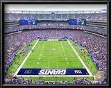 New Meadowlands Stadium 2010 (Giants) Print
