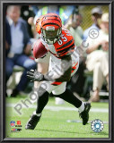 Chad Ochocinco 2009 Prints