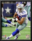 Miles Austin 2010 Action Prints