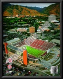 Rice-Eccles Stadium University of Utah Utes 2008 Prints
