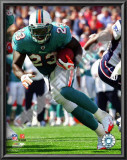 Ronnie Brown Poster