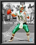Dan Marino Posters