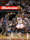 Charlotte Bobcats v Miami Heat: Chris Bosh and Gerald Wallace Photographic Print by Mike Ehrmann
