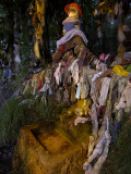 An Ancient Celtic Holy Well with Rags Dipped and Hung for Good Luck Photographic Print by Jim Richardson