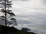 Silhouette of a Tree with the Rocky Oregon Coast in the Background Impresso fotogrfica por Michael Hanson