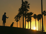 Silhouettes of a Man and His Dog and Palm Trees at Sunset Photographic Print by Rich Reid