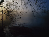 Fog and Silhouetted Trees at Sunrise on the Little Tennessee River Photographic Print by Raymond Gehman
