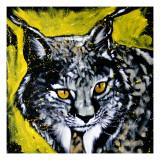 Lynx Print