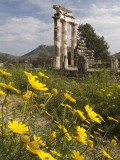 The Tholos Temple in the Sanctuary of Athena Pronaia And Photographic Print by Richard Nowitz