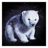 Baby Polar Bear 2 Prints