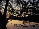 Sunset at Hematite Lake Photographic Print by Raymond Gehman