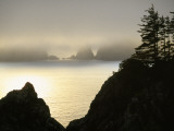 Pacific Fog Cloaks Rocky Outcroppings at Puffin Cove Photographic Print by Raymond Gehman