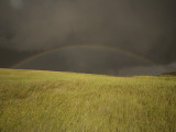 Thunderclouds and Rainbow Gather Above Little Missouri Grasslands Photographic Print by Phil Schermeister