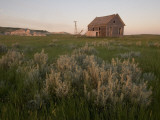 An Abandoned House Sits Near White Butte in the Grasslands Impresso fotogrfica por Phil Schermeister