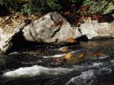 Water Rushing Past Boulders Along the Banks of the Nantahala River Fotografisk tryk af Raymond Gehman