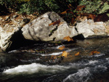 Water Rushing Past Boulders Along the Banks of the Nantahala River Photographic Print by Raymond Gehman