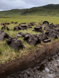 Peat Cutting on the Isle of Lewis Photographic Print by Jim Richardson