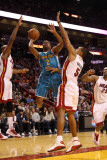 New Orleans Hornets v Miami Heat: Jarrett Jack and Juwan Howard Photographic Print by  Mike
