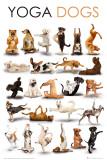 YOGein Hunde Kunstdrucke