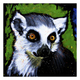 Ringtail Lemar Prints