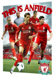 LIVERPOOL - Players 10/11, 3-D Poster Posters