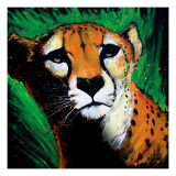 Cheetah Posters