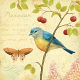Garden Passion IV Posters af Daphne Brissonnet