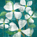 White Magnolias Square Prints by Maria Carluccio