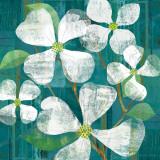 White Magnolias Square Poster by Maria Carluccio