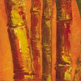 Bamboo Columbia III Posters by Tita Quintero