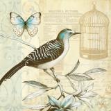 Freedom I Affiche par Lisa Audit