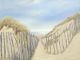 Ocean Pathway II Posters by Lynne Timmington