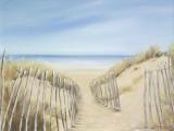 Ocean Pathway I Art by Lynne Timmington