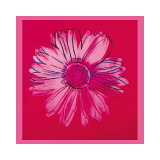 Daisy, c.1982 (Crimson and Pink) Giclee Print by Andy Warhol