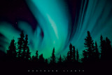 Northern Lights Pósters