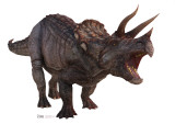 Triceratops Stand Up
