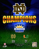 Notre Dame Fighting Irish Sun Bowl Champions Composite Photo